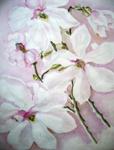 Aroma thearpie berust op vluchtige olie uit bloesems en andere plantendelen. Bloesemtak, door M.P.H.Keppel Hesselink van Blommestein