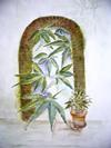 Cannabis, aquarel MPHKHvB