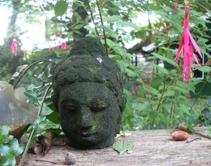 Buddha, JMKH